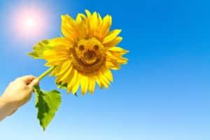 Ökostrom: Sonnenenergie
