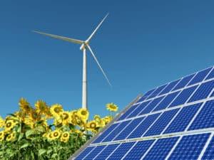 Ökostrom: Windenergie